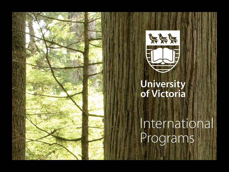 International Programs Banner